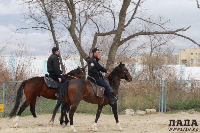 Четвероногие помощники полиции