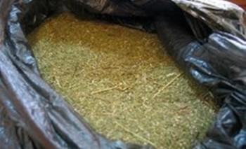 Поездом «Алматы - Мангышлак» пытались передать 85 кг наркотиков