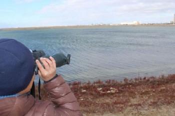 Мангистауские бедвочеры приступили к наблюдению за озером Караколь