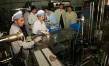 Актауские молочники готовы производить кефир и сметану для ЗКО и России