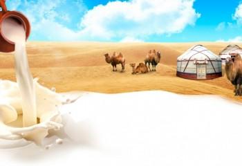 Верблюжье молоко из Мангистау разместят на торговой площадке в ОАЭ