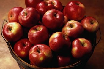В Кыргызстан из Казахстана вернули более 70 т карантинных яблок