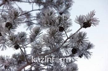 Какой будет предстоящая зима в Казахстане, рассказали синоптики